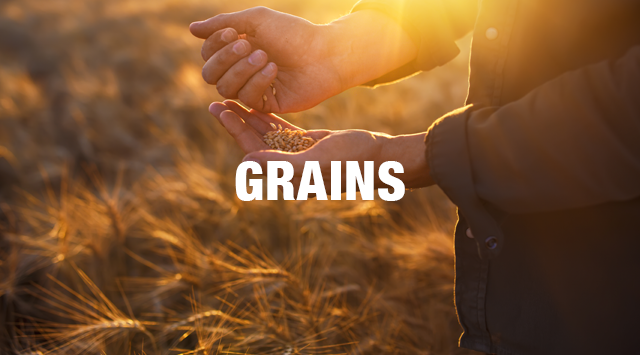 food-grains